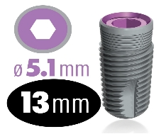 infinity Internal Hex Implant 5.1mm x 13mm